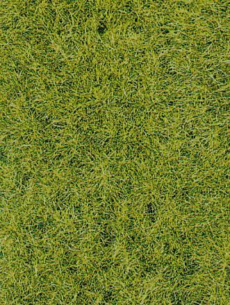 Herbes sol forestier 6mm -HEKI 1576